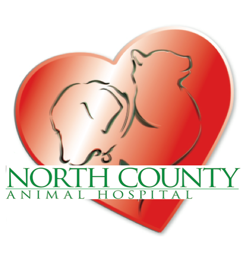North County Animal Hospital - Paso Robles, CA