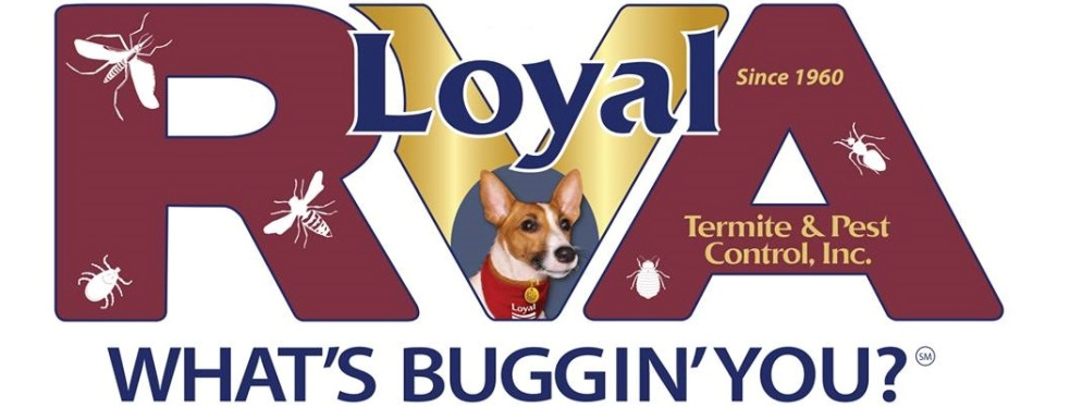 Loyal Termite & Pest Control Co., Inc.