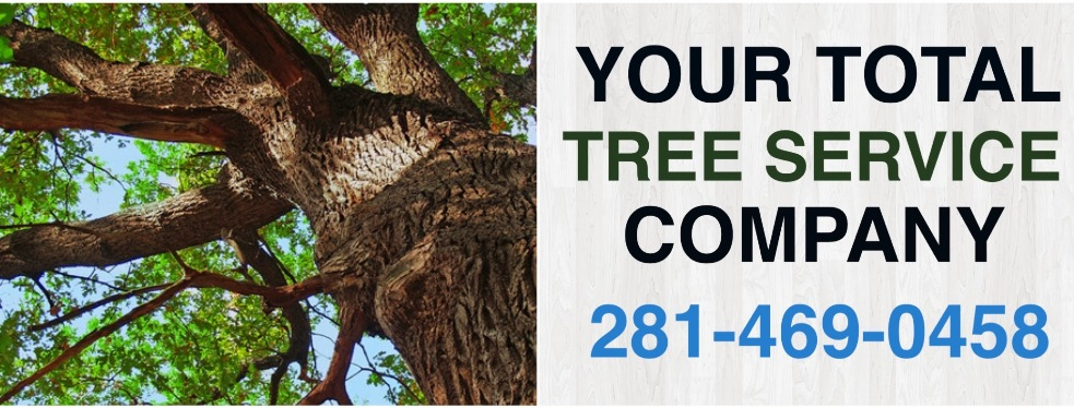 Jones Road Tree Service reviews | Home Improvements at 11620 Jones Rd - Houston TX