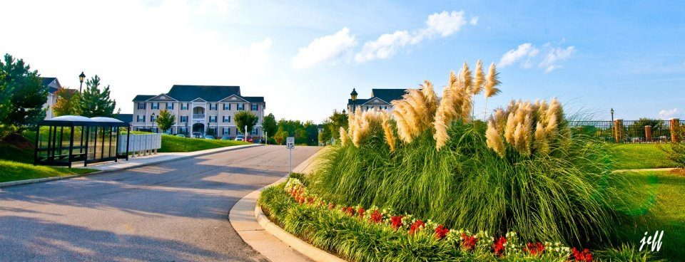 Sunchase at Longwood reviews | Apartments at 501 Sunchase Blvd - Farmville VA