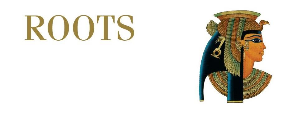 Roots Organic Hair reviews | Hair Salons at 3821 Falmouth Rd. - Marstons Mills MA