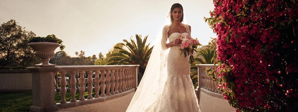 David's Bridal Mexico Reviews, Ratings | Accessories near Av. Revolución 1519, Campestre , Mexico City NM