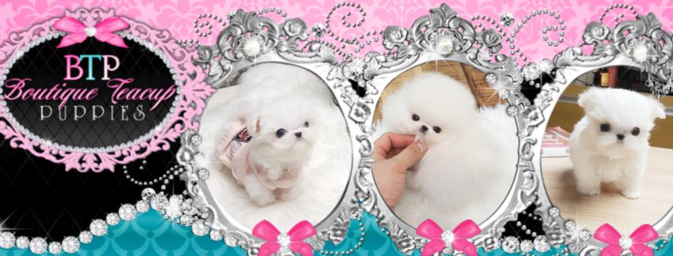 Boutique Teacup Puppies reviews | Pet Services at 5850 San Filipe Street - Houston TX