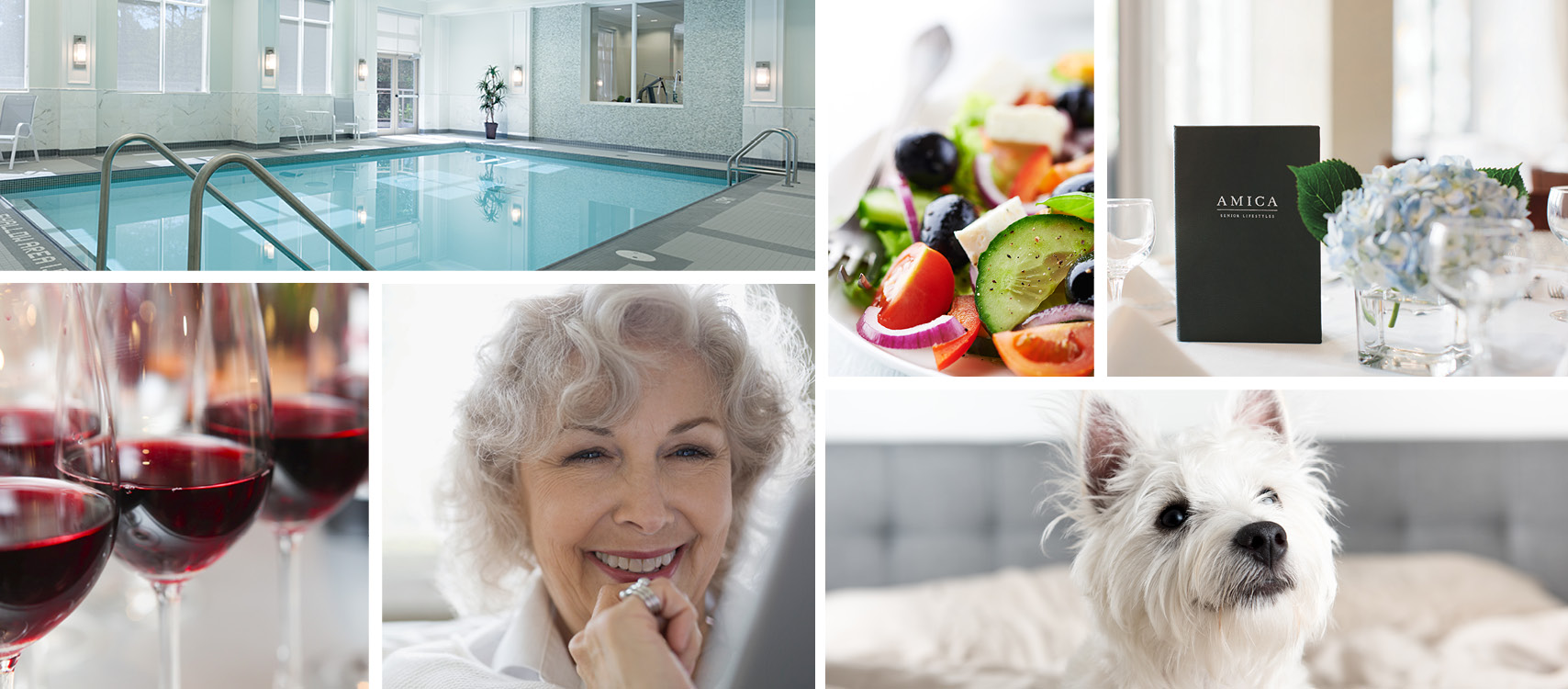 Amica Swan Lake reviews | Retirement Homes at 6360 16th Ave - Markham ON
