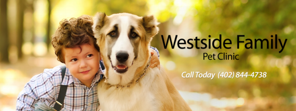 Westside Family Pet Clinic reviews | Anesthesiologists at 104 N 37th St - Norfolk NE