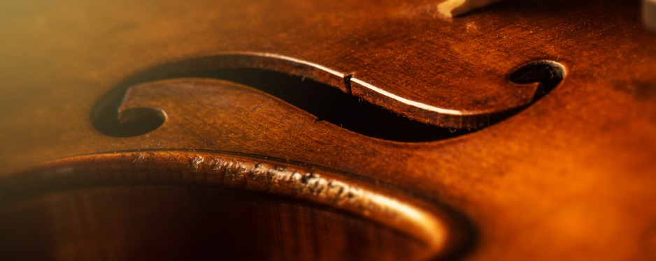 Ronald Sachs Violins reviews | Musical Instruments & Teachers at 4155 5th Ave N - St. Petersburg FL