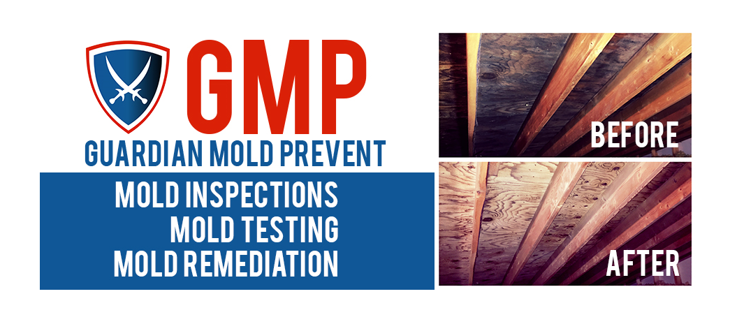 Guardian Mold Prevent Corp reviews | Damage Restoration at 551 Roosevelt Rd #178 - Lombard IL