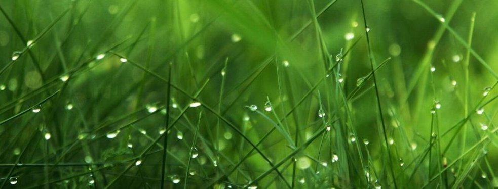 Seed World USA reviews   Home & Garden at 6881 Lutz Lake Fern Rd - Odessa FL