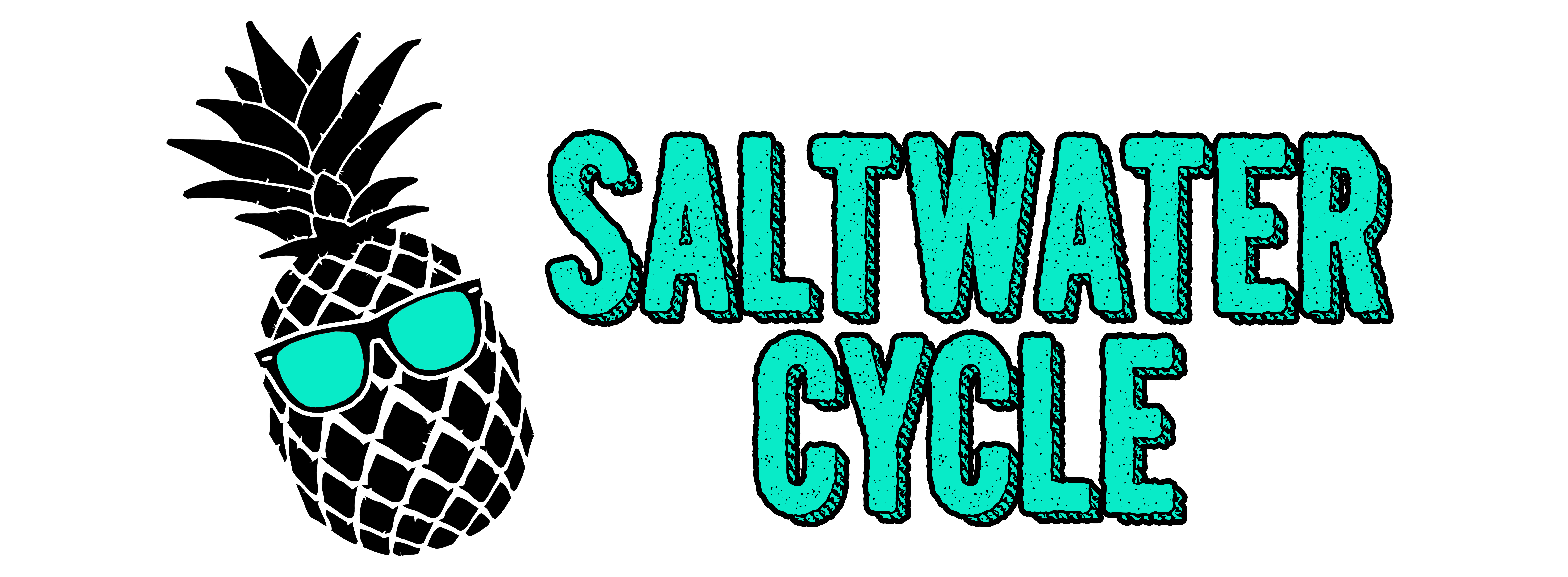 Saltwater Cycle reviews | Boat Tours at 33 Lockwood Dr - Charleston SC