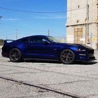 Damon Rivetti review for Mustang Hub Magazine
