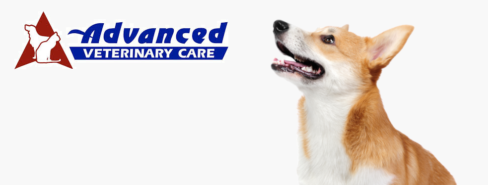 Advanced Veterinary Care reviews | Healthcare at 4210 West 8th Street - Yankton SD