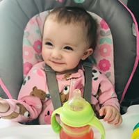 Shelby Rodriguez Coburn review for Toledo Basement Repair