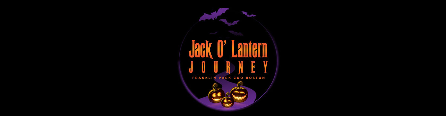 Jack O' Lantern Journey reviews | Kids Activities at  NY