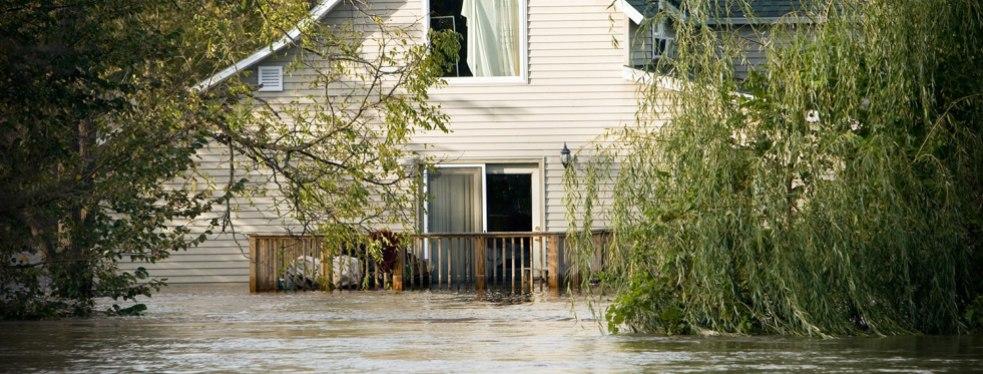 Paul Davis Restoration of Coastal Georgia reviews | Disaster Restoration Services at 3518 Ross Rd - Savannah GA