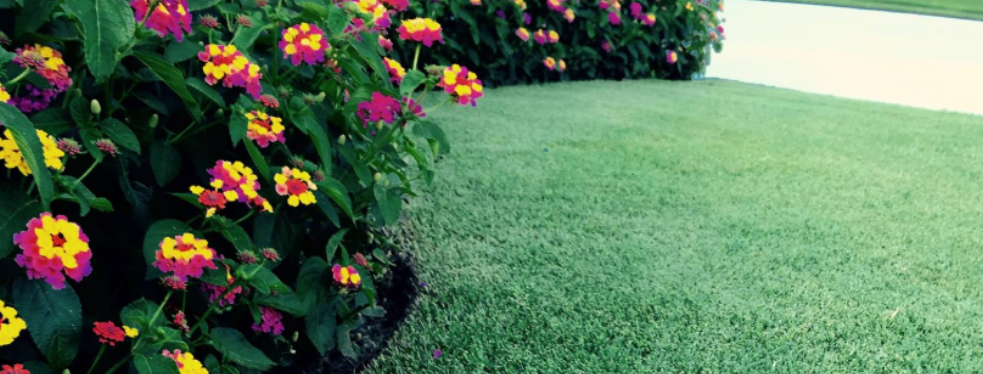TurfMark Outdoor Solutions reviews | Lawn Services at 7380 Spout Springs Rd - Flowery Branch GA