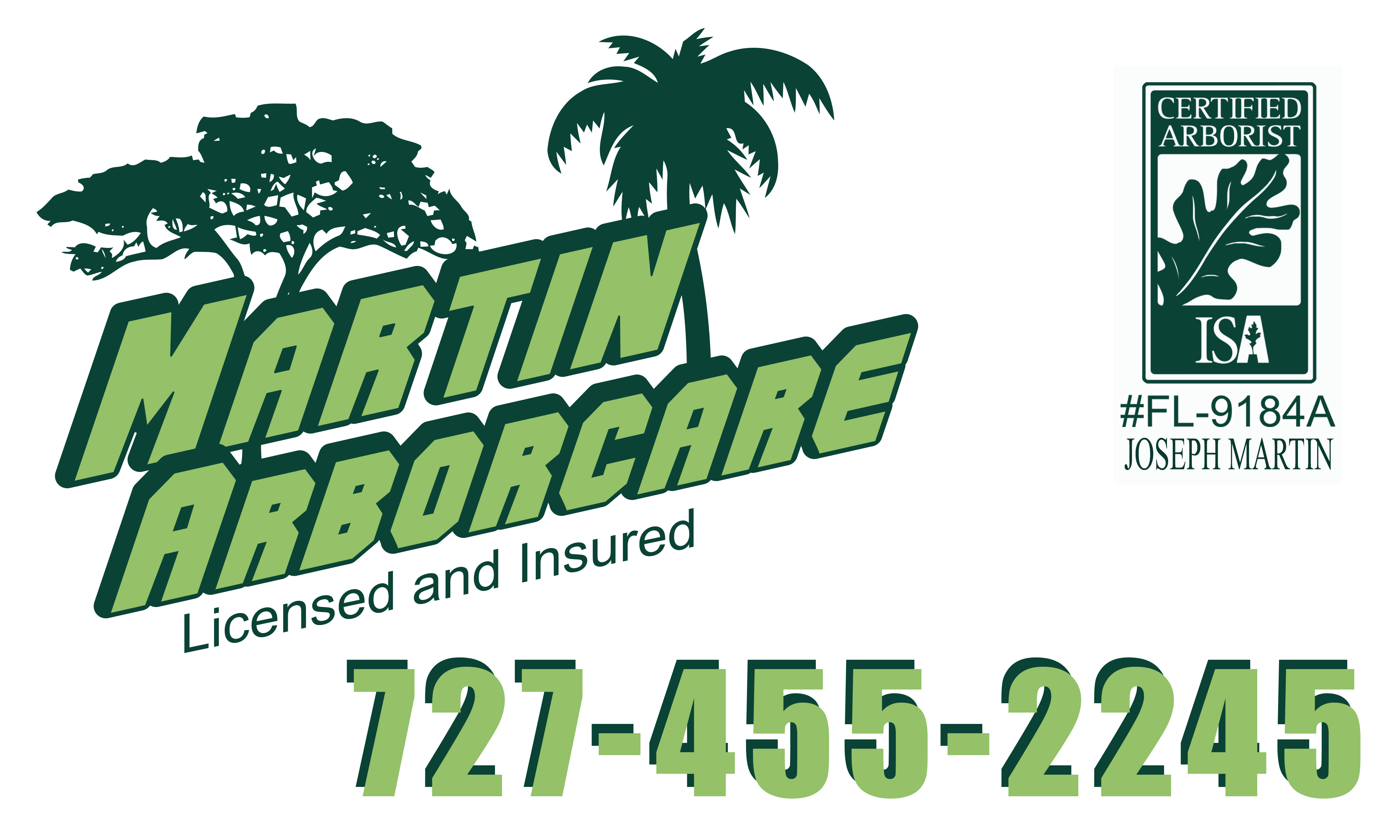 Martin Arborcare reviews | Tree Services at 3762 3rd Ave north - St. Petersburg FL