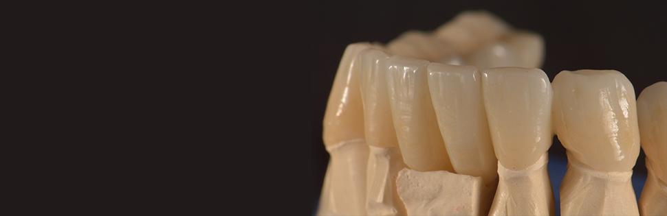 Blue Crane Dental Lab reviews | Dental at 1940 Pavilion Dr #1 - Virginia Beach VA