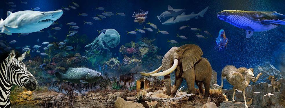 Wonders Of Wildlife National Museum & Aquarium reviews | Aquariums at 500 W Sunshine St -  Springfield MO