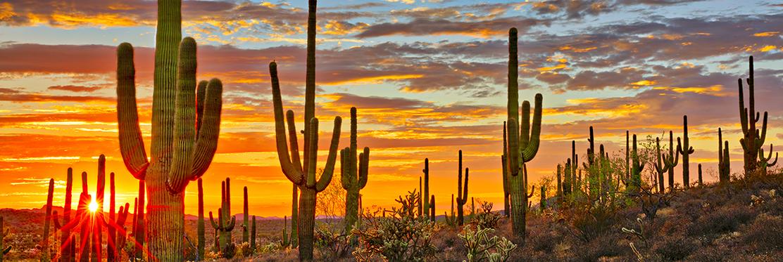 Pam Baker Group reviews   Mortgage Lenders at 14275 N 87th Street - Scottsdale AZ