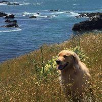 Julie Doyle Sayre review for Durango RV Resorts