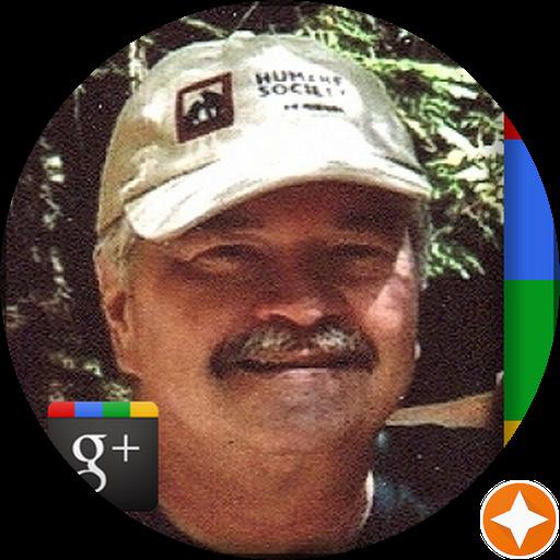 Tom Heatherington's Profile Image