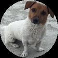 Randy Womack's Profile Image