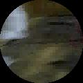 nsp2796's Profile Image