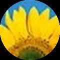 Mimi Brown's Profile Image