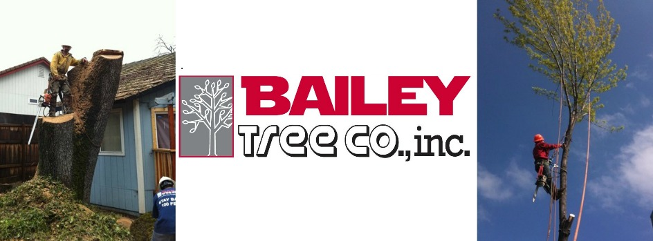 Bailey Tree Company, Inc. reviews | Lawn Services at 2664 Mercantile Drive - Rancho Cordova CA