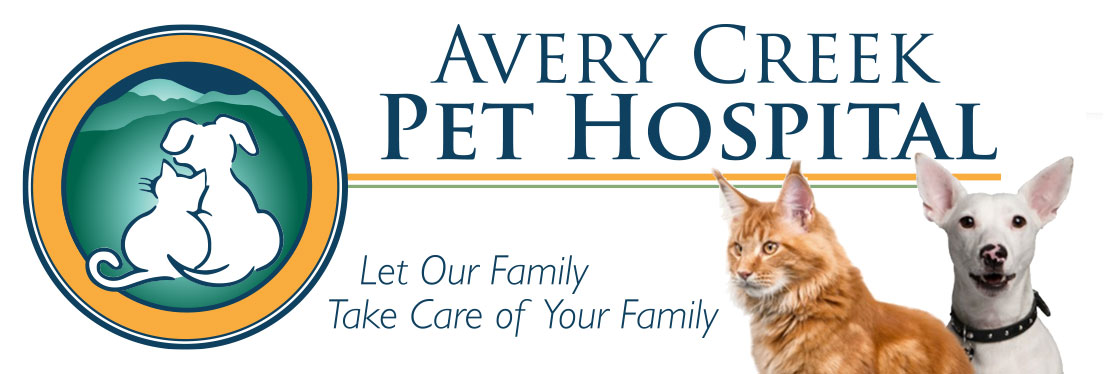 Avery Creek Pet Hospital reviews | Veterinarians at 565 Long Shoals Rd - Arden NC