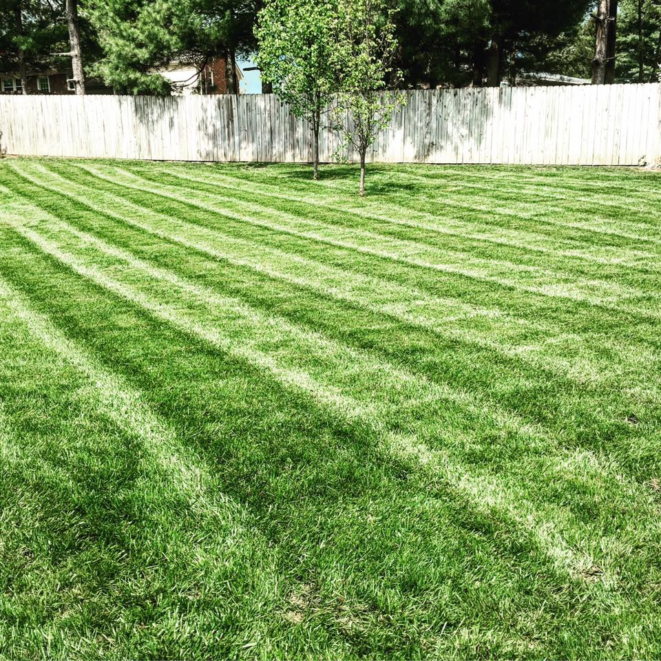Epic Lawn Care reviews | Lawn Services at 204 Wilson Downing Road, Lexington, KY, USA - Lexington KY