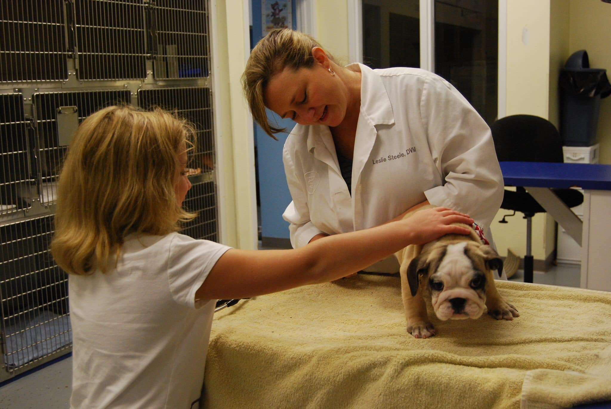 Advanced Animal Care of Mt. Pleasant reviews | Veterinarians at 3373 S Morgans Point Rd - Mt Pleasant SC