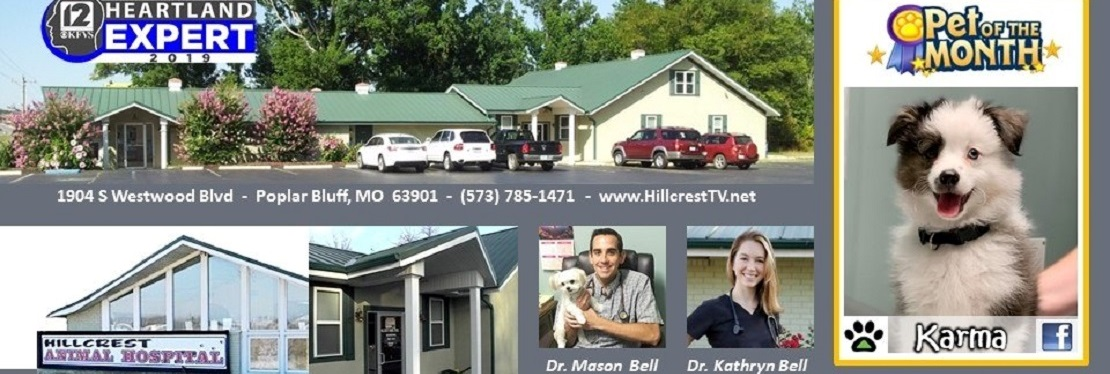 Hillcrest Animal Hospital reviews | Emergency Pet Hospital at 1904 South Westwood Boulevard - Poplar Bluff MO