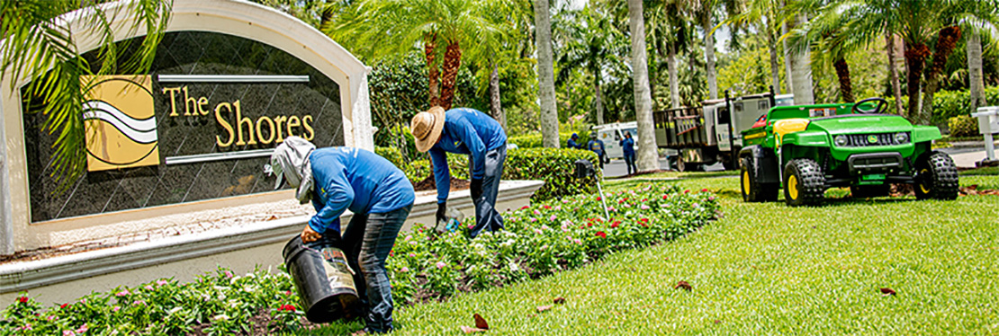 Everyday Landscape Maintenance reviews | Landscaping at 5835 Youngquist Rd - Fort Myers FL