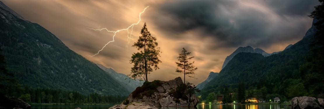 Matt's Tree Service, LLC reviews   Tree Services at 4580 Klahanie Dr - Issaquah WA