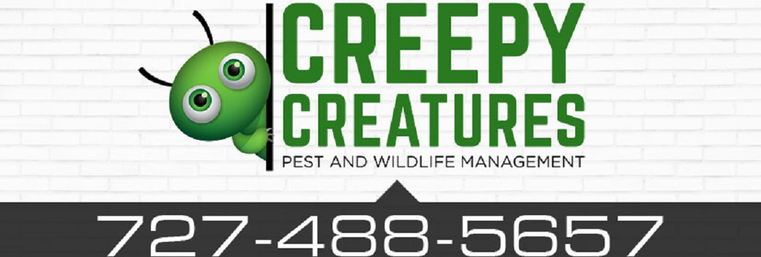 Creepy Creatures, Inc. reviews | Pest Control at 2989 Bradford circle - Palm Harbor FL