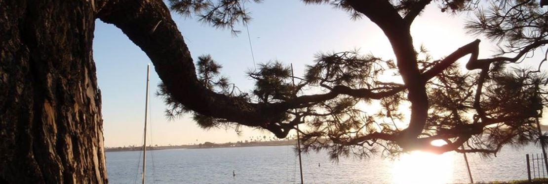 Coastal Tree Care reviews | Tree Services at 4349 Twain Ave - San Diego CA