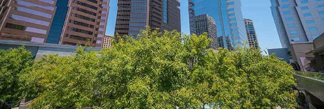 Tree Pros, LLC reviews | Tree Services at 2836 West Durango Street - Phoenix AZ
