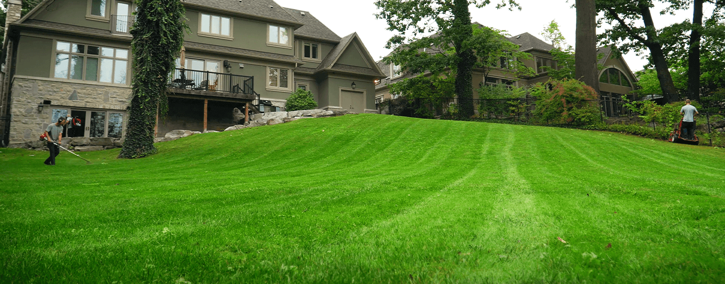 Dependable Lawn Care, Inc. reviews | Lawn Services at 1375 Southdown Rd - Mississauga ON