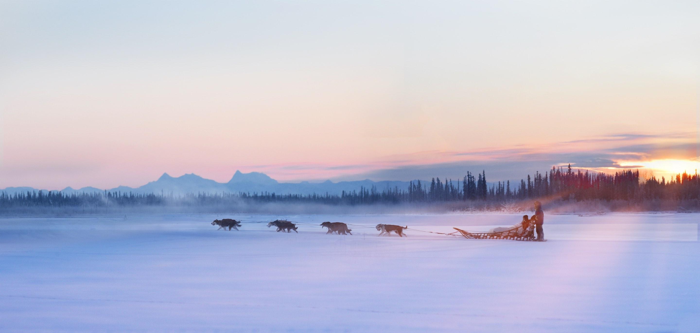 Trail Breaker Kennel Reviews, Ratings | Tours near 5880 Airport Industrial Rd , Fairbanks AK