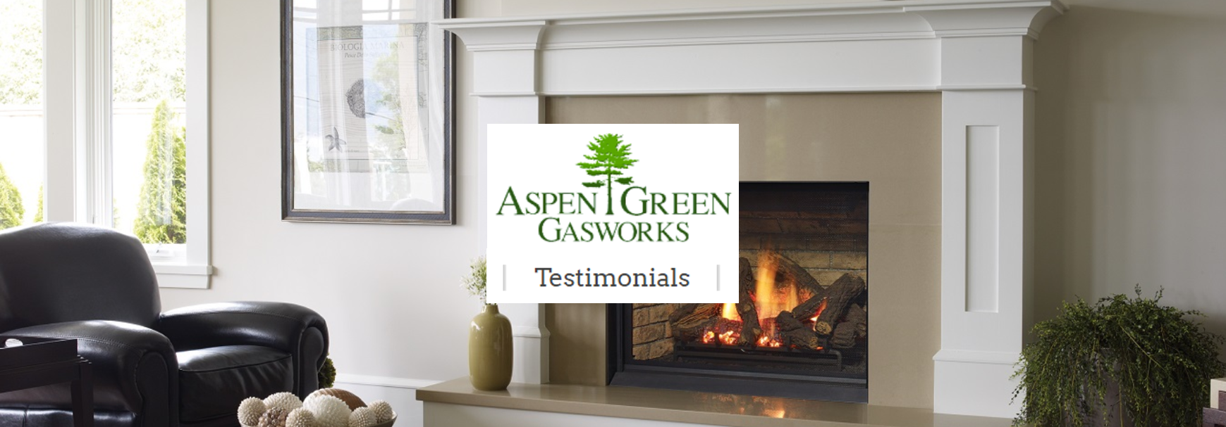 Aspen Green Gasworks reviews | Fireplace Services at 307 Spring St - Herndon VA