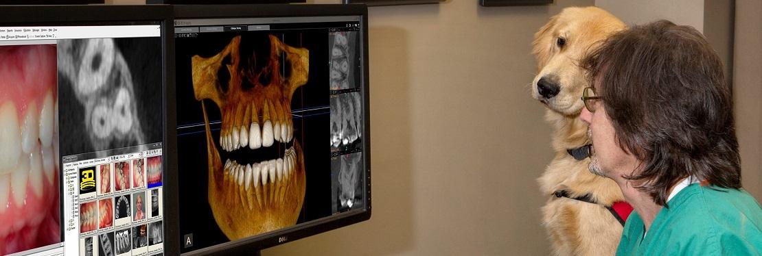 Atlanta Endodontics reviews   Endodontists at 1505 Mt Vernon Rd. - Atlanta GA
