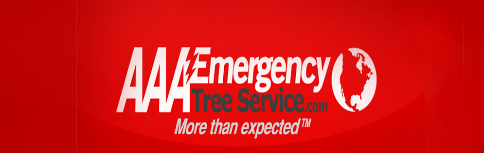 AAA Emergency Tree Service reviews | Home Services at 1115 W 10th Ave - Denver CO
