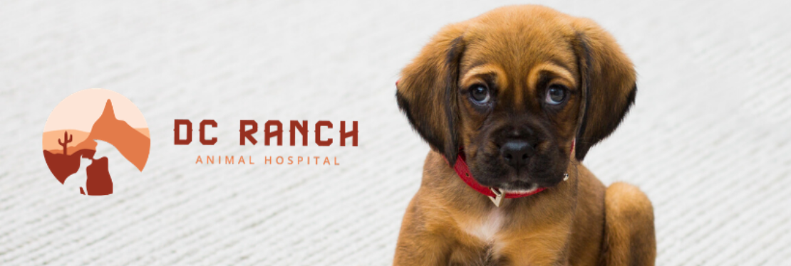DC Ranch Animal Hospital reviews | Veterinarians at 20875 N Pima Road - Scottsdale AZ