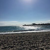 Gina Natale review for Pompano Pet Lodge