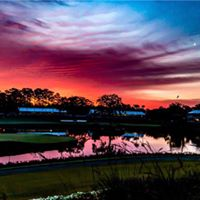 Delores Jones review for Jacksonville Title & Trust