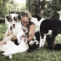 Alyssa Christine review for Pompano Pet Lodge